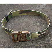 IA Dog Collar and Lead
